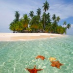 TaxConnections Picture - Tropical Paradise - square