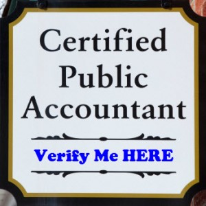 what services do public accountants offer